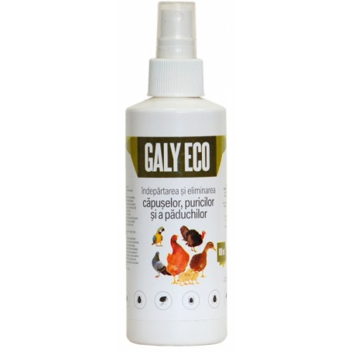 galy eco